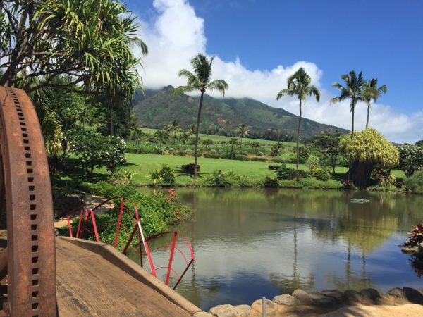 Pineapple Express Tour Maui