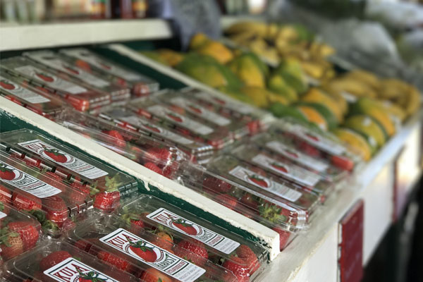 World renowned strawberries from Kula Country Farm.