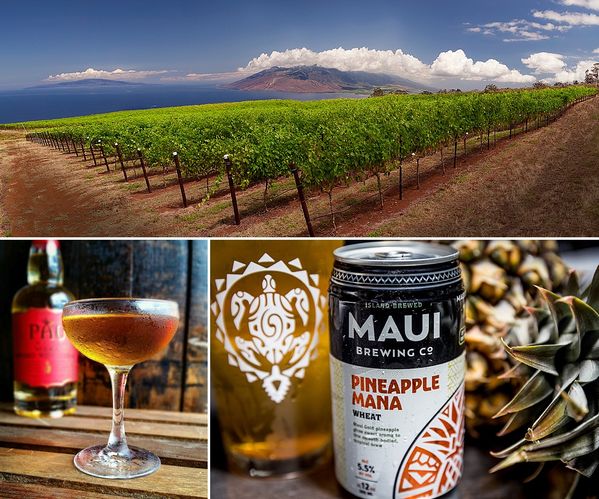 maui brewery and winery tour