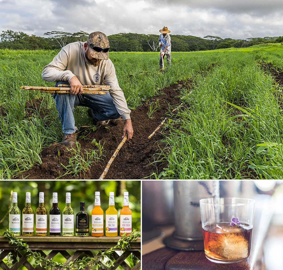 kauai craft distilleries