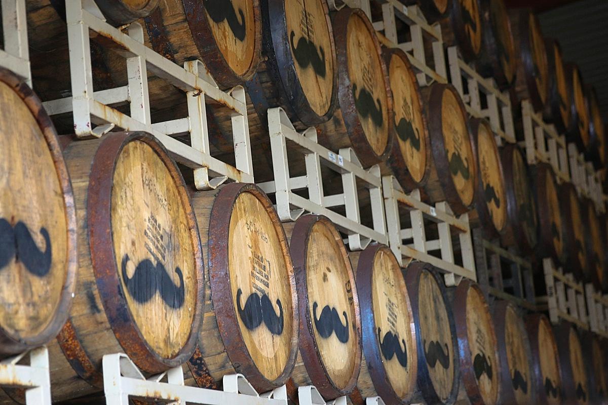distillery tours maui