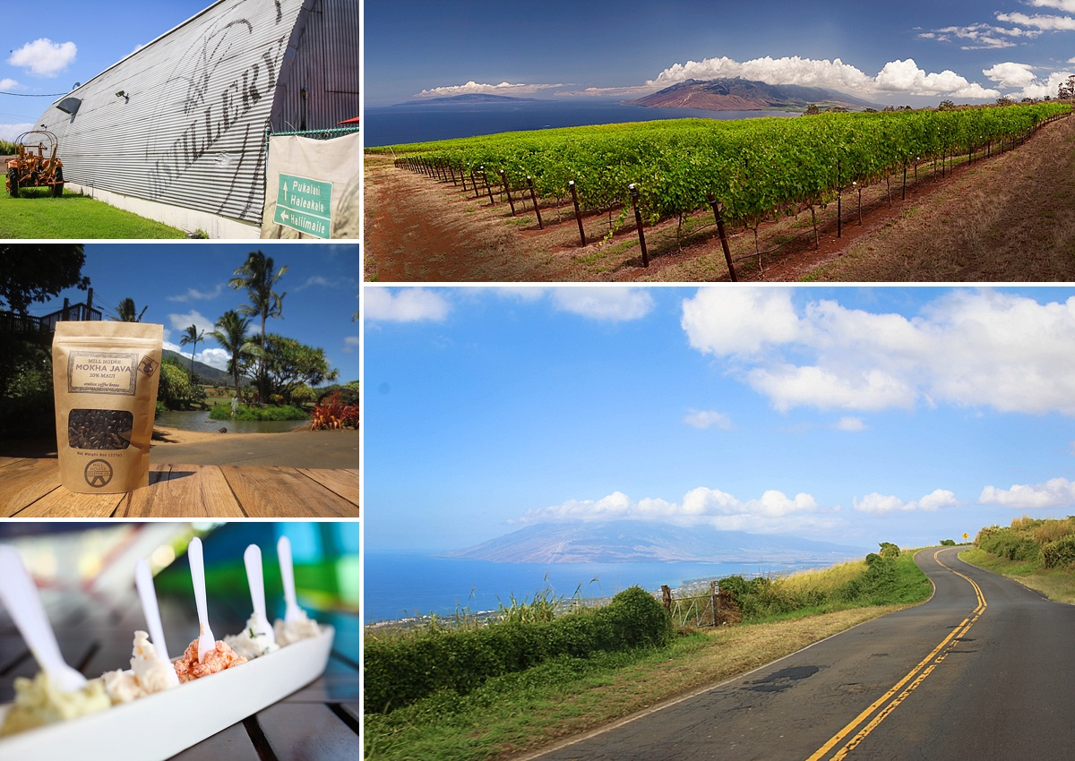 best tours in maui 2019